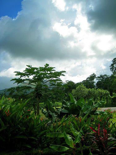 Costa Rica's Scenic Views