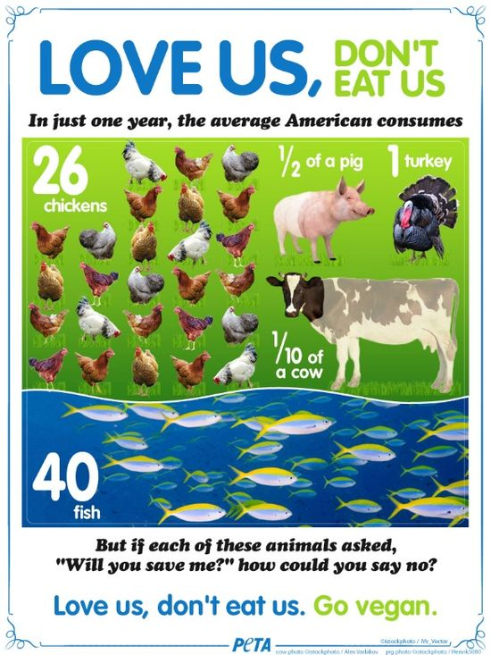 Love Us, Don't Eat Us #infographic #animals #cute #vegan
