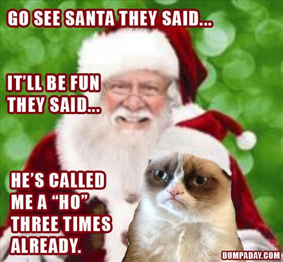 grumpy cat, christmas pictures