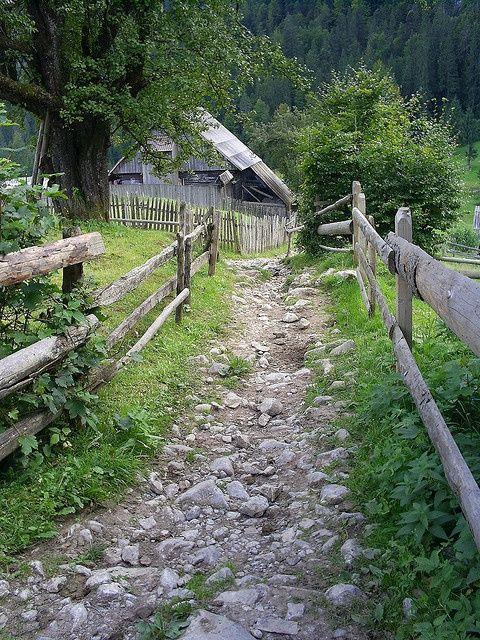 rocky garden pathway