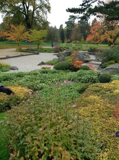 Japanese Garden at KEW Gardens in its Autumn glory - Mercurelli's Garden Design
