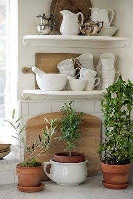 elements of a kitchen- green plants, wood and plenty of white.