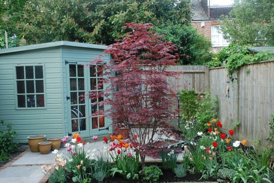 A Garden of Colour - Pod Garden Design