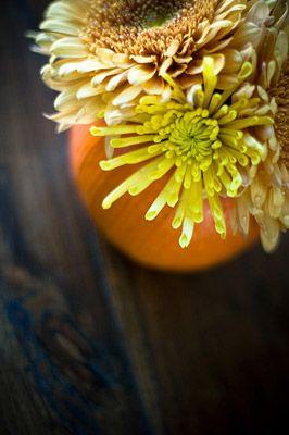:: Forget Me Knodt - Flower Arrangements for Weddings & Events ::