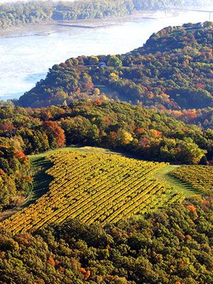 Missouri: wine trails