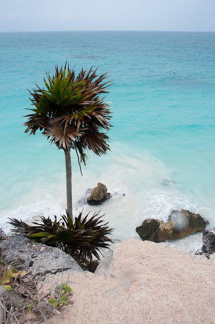 So far this is my favorite beach.. Tulum, Mexico