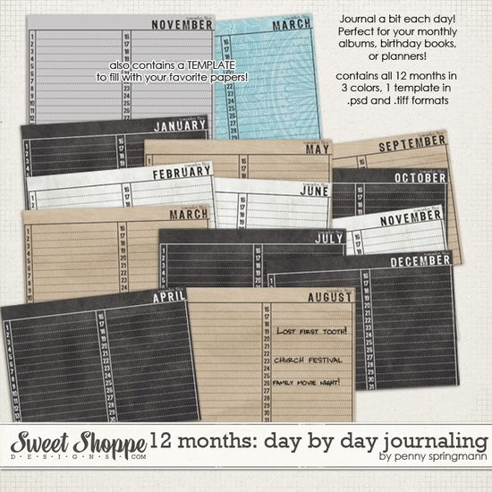 12 Months: Day by Day Journaling by Penny Springmann