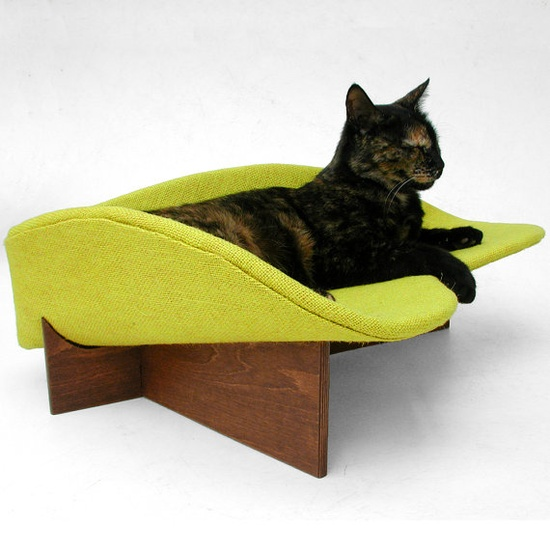 Cool cat bed. The model cat even looks like Emma.