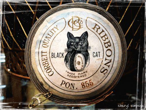black cat ribbons