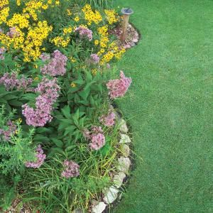 How to Build a Rain Garden in Your Yard - lots of home and garden DIY on this site