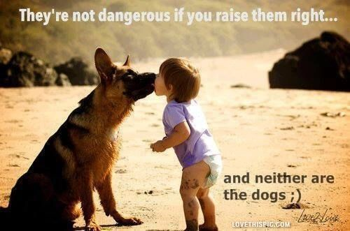 if you raise them right family cute quote dog kid pet