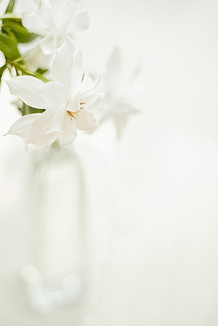 ** White