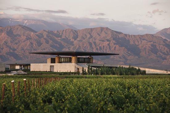 O. Fournier Winery in La Consulta, Argentina by Bórmida & Yanzón