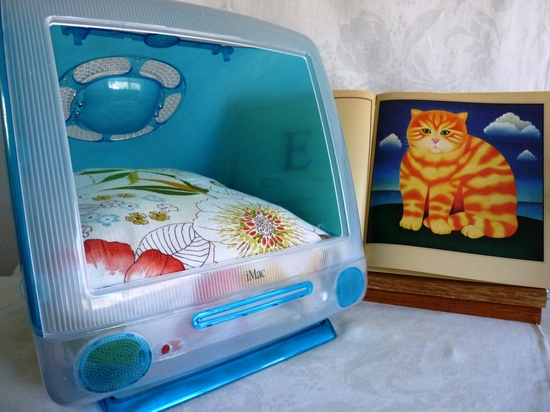 Poppy Dreams Pet Bed Upcycled Millennial iMac Custom Pillow Cushion. $122.00, via Etsy.