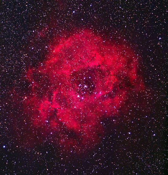 The Rose Nebula #Space