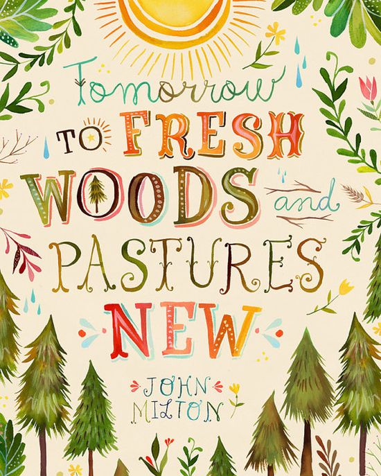fresh woods by katie daisy