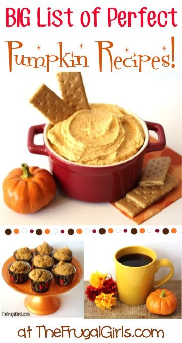 BIG List of Perfect Pumpkin Recipes! ~ from TheFrugalGirls.com ~ cozy up this Fall and get inspired with these delicious recipes! #pumpkins