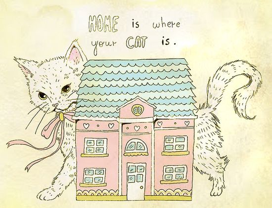 Home is where your cat is.