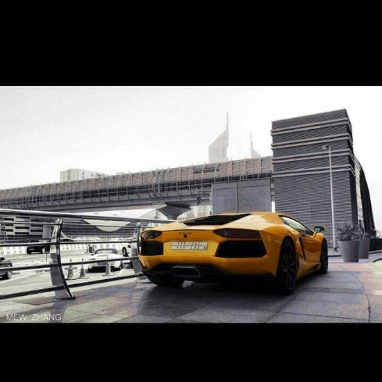 Golden Yellow Lamborghini!