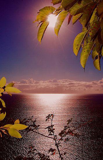 Sunrise in Perth, Australia  ? ? www.paintingyouwi...