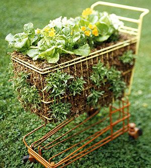 Simple Salad-Garden Containers--clever...an old shopping cart as a lettuce garden