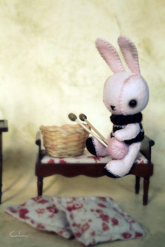 ?Bunny?