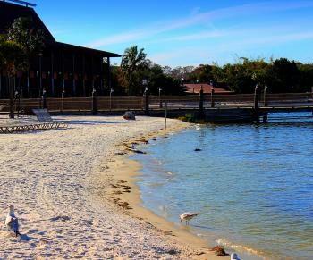 Polynesian Resort Beach ~ Walt Disney World Florida ºOº