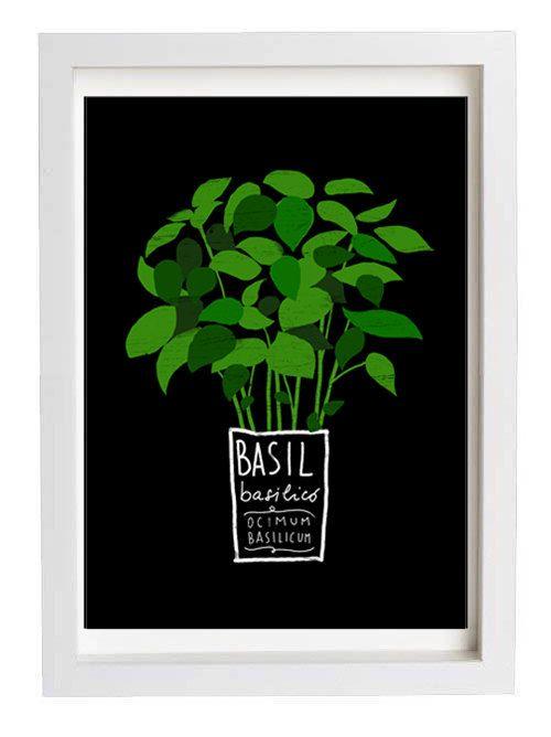 BASIL Kitchen Art Print Mediterranean Herbs Garden high by anek. $30.00, via Etsy.