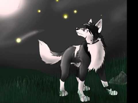 Cool Cartoon Wolves - cartoon wolf - videos.airgin.org...