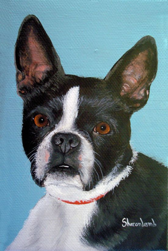 Commission a custom Pet Portrait Painting Hand Painted 8 x 10 Portrait of Your Pet any Dog Cat Horse $95.00