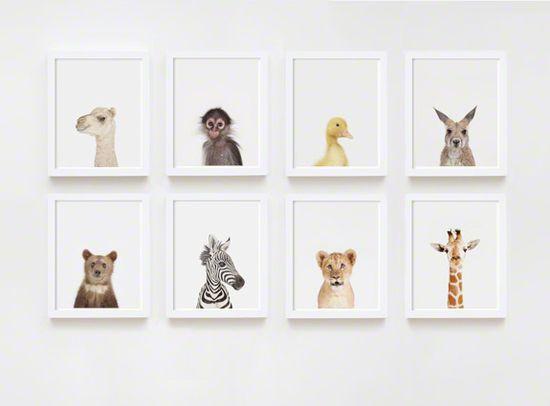 animal prints for kids room