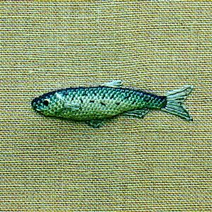 fish on linen