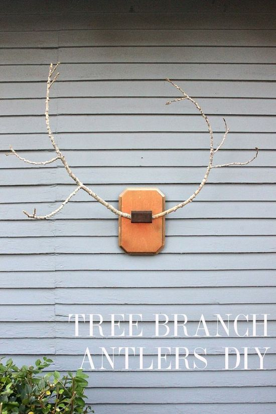Love this idea by @Smile and Wave for Branch Antlers!