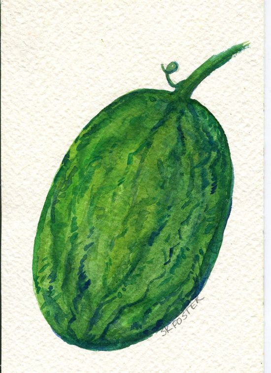 Original Watermelon Watercolor Painting Fruit by SharonFosterArt, $8.25