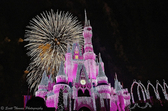 This is the best way to end a fun day at Disney World...fireworks over Cindy's Castle!!