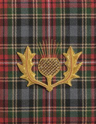 Thistle pin on tartan