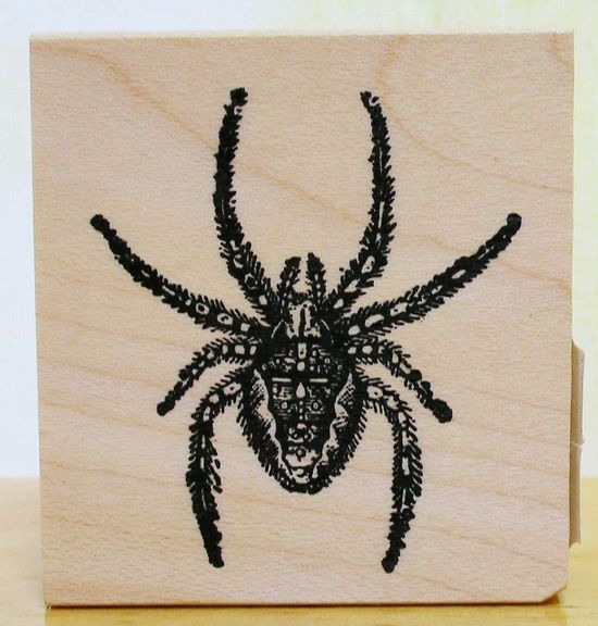 Spider Painting
