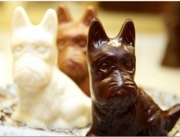 Chocolate Scottie Dog