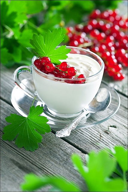 Wonderfully refreshing White Chocolate Sour Cream with Red Currents.  #food #cooking #meals #baking #desserts #dairy #chocolate #fruit #red #white #currants #whitechocolate #sourcream