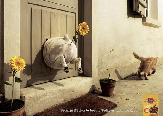 "PRINT AD: ""Perhaps it's time to turn to pedigree *light* dog food."" [PEDIGREE]"