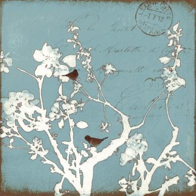 song bird blue