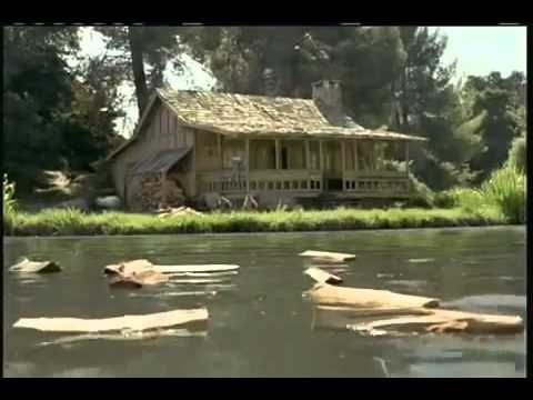 Geico Funny Commercial TV Ad   Really Funny Wood Chucks