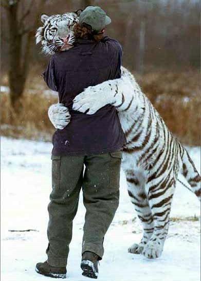 Give me that over a bear hug any day :)
