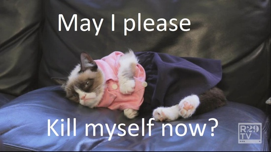 Grumpy Cat's had enough dress up.