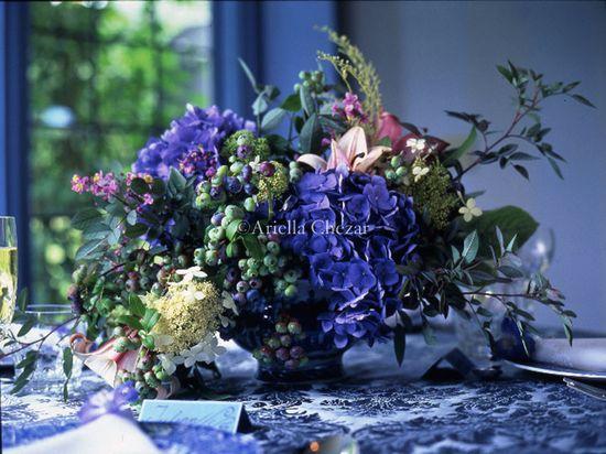 hydrangea, blueberry, etc
