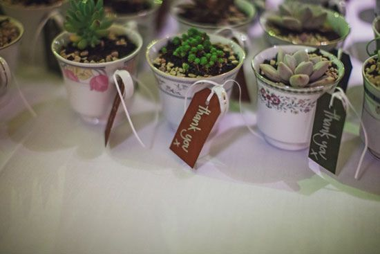 succulent bombonieres in teacups! doubles as a placecard :)