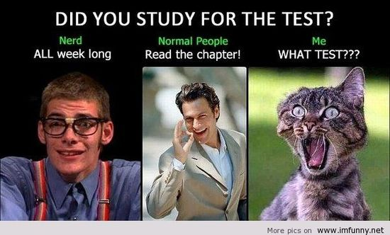 Did you study? Funny pictures