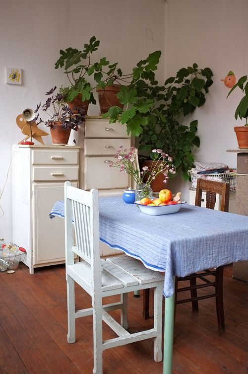 Sneak Peek: Best of Indoor Plants. Mieke Verbijlen's home in Antwerp, Belgium, is filled with plants. The two fig trees and a huge sparmania make this kitchen corner very green. #sneakpeek
