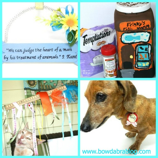 Pet Crafts- DIY crafts for cats & dogs