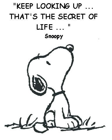 Snoopy knows!